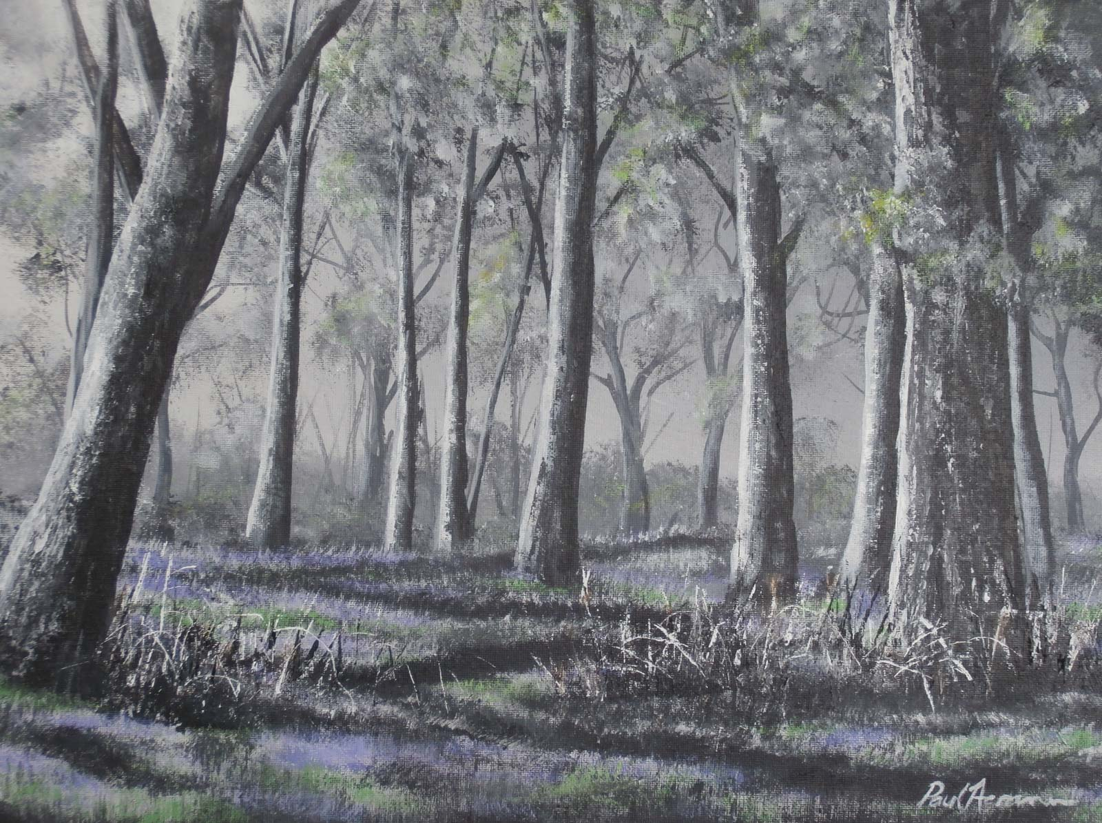 Paul Acraman landscape painting Devon Bluebell Walk