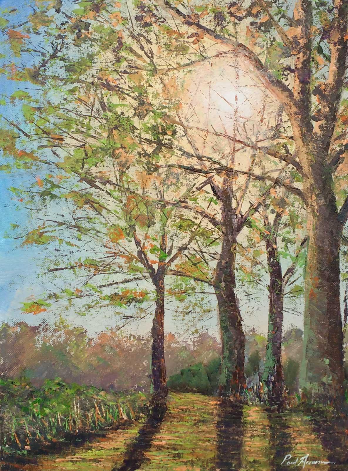 Paul Acraman-landscape-painting-Devon-trees-Top Path Saltram Park